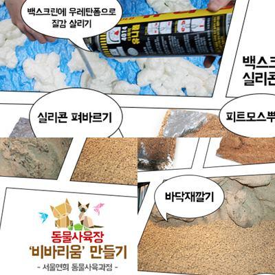 서울연희실용전문학교 반동물관리전공 전문대학교 학위취득과정 특수동물사육사, 동물사육장 비바리움을 만들때 사용되는 재료를 알아봤어요 204